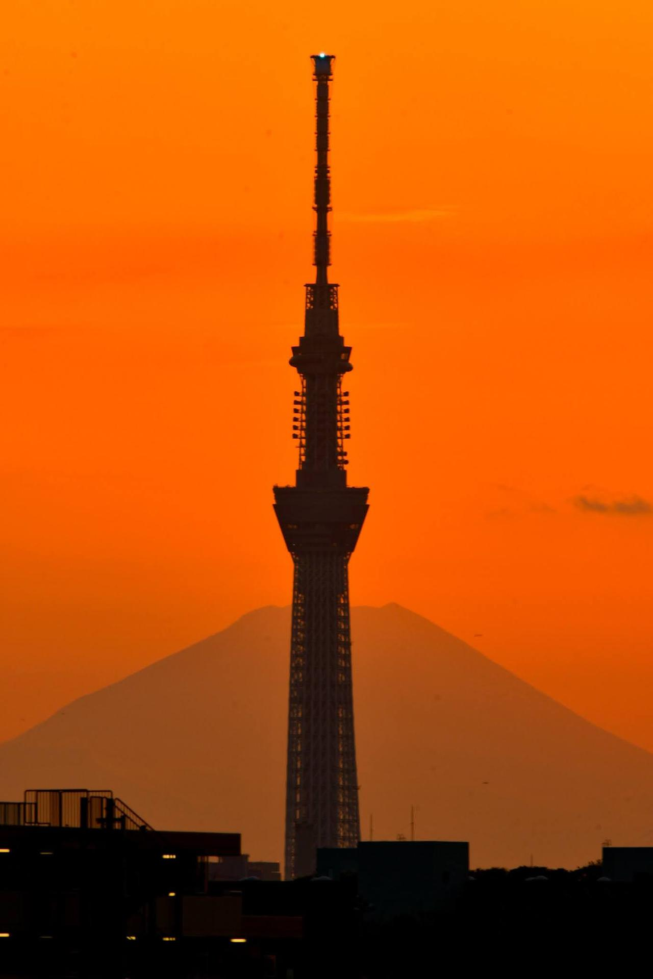 画像: 富士山と重なるスカイツリー(スタッフ撮影) Twitterではツアーの先行発表やスタッフが撮影した写真の紹介など、様々な情報を発信しております。 ↓下記URLより是非フォローしてご覧下さい!↓ twitter.com