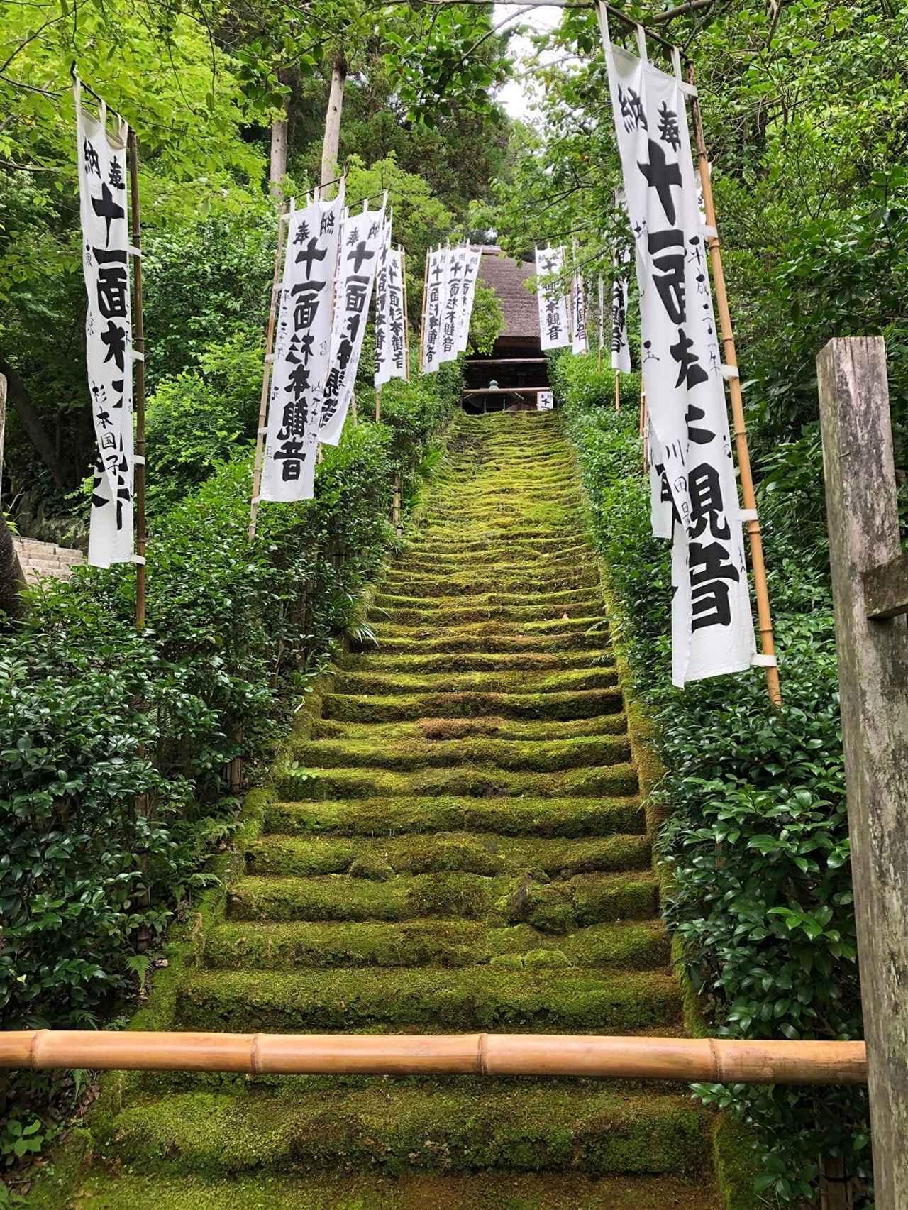 画像: 1番札所 杉本寺 苔の階段