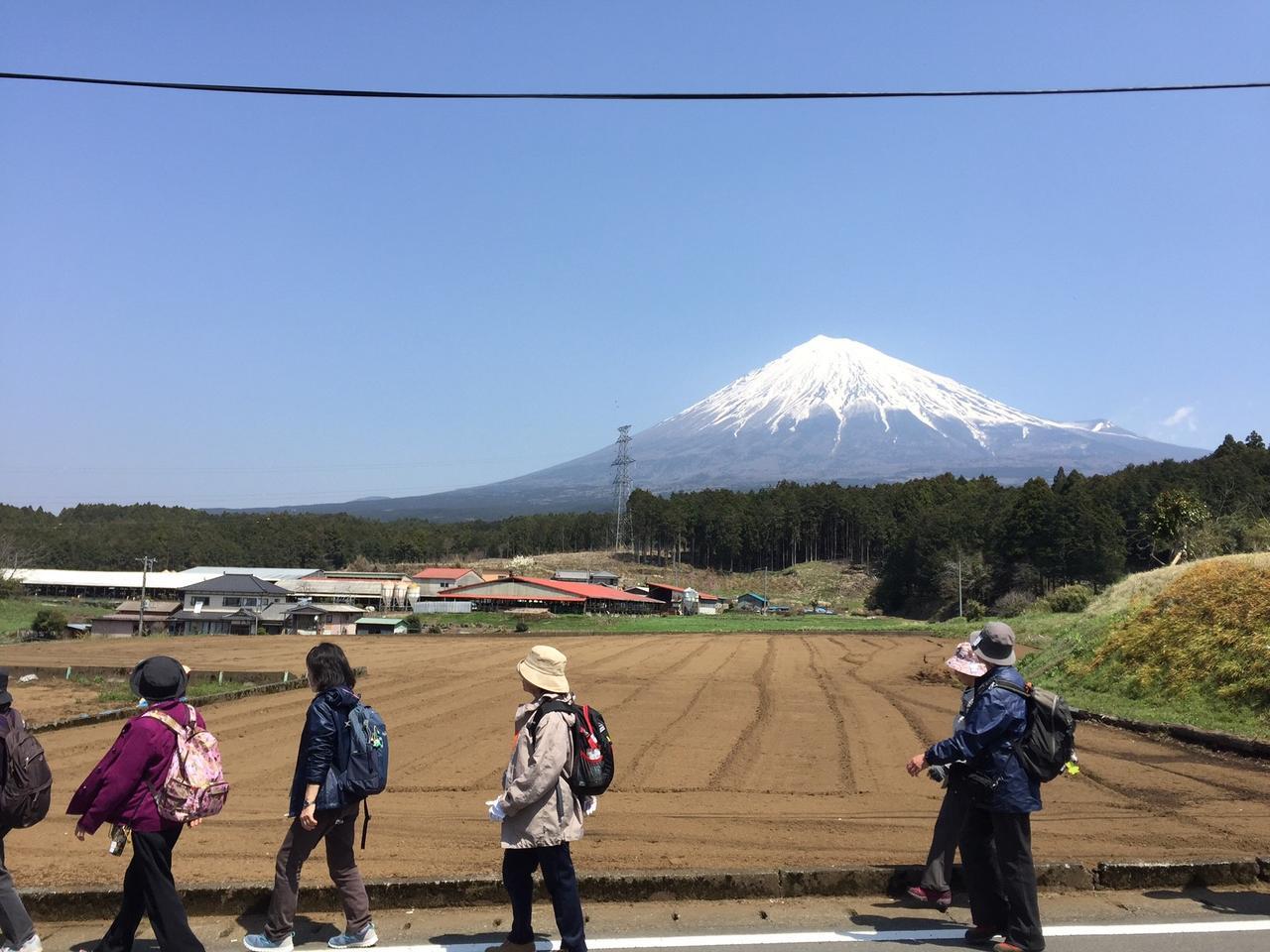 画像4: 富士山を感じながらのウォーキング♪