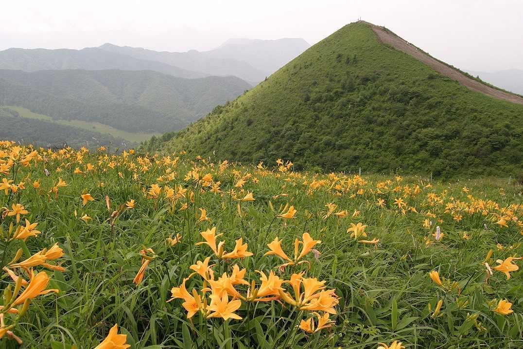 画像: 八ヶ岳(霧ヶ峰、美ヶ原、奥秩父)登山ツアー・旅行|あるく|クラブツーリズム