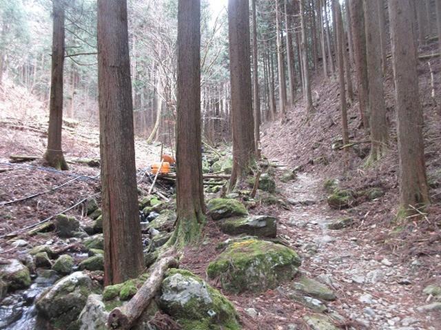 画像2: 【山旅会】浅間嶺