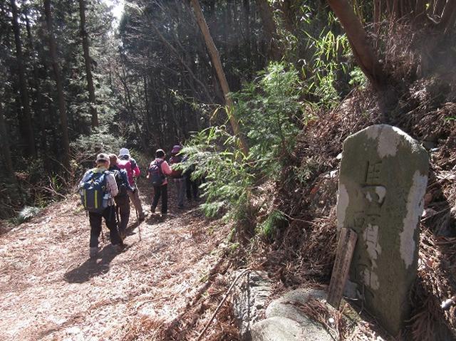 画像11: 【山旅会】陣見山
