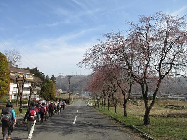 画像14: 【山旅会】陣見山