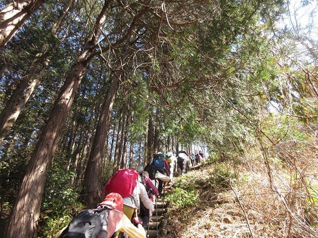 画像6: 【山旅会】陣見山