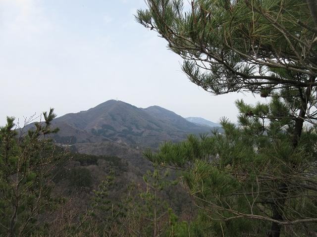画像4: 【山旅会】国上山と角田山 その2