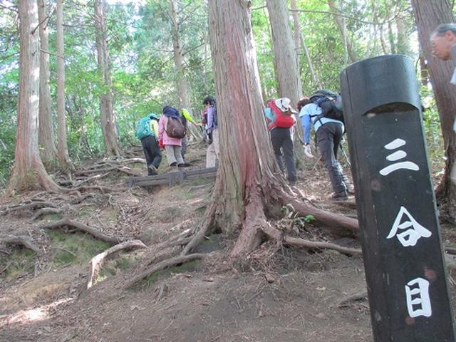 画像9: 【山旅会】伯耆大山に登りませんか