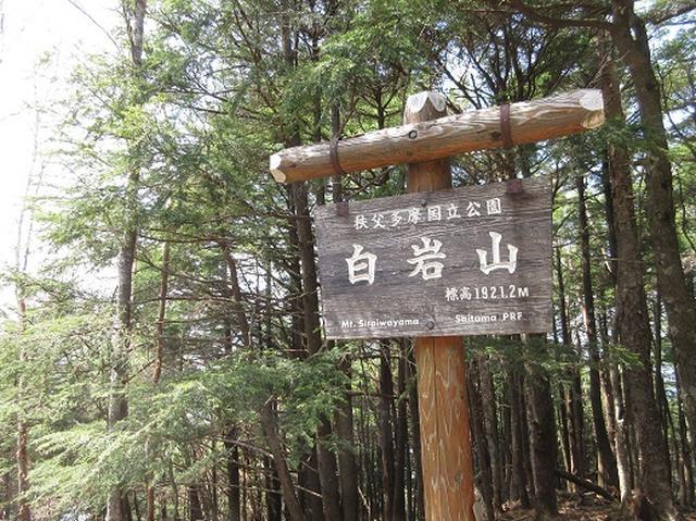画像3: 【山旅会】雲取山のご案内
