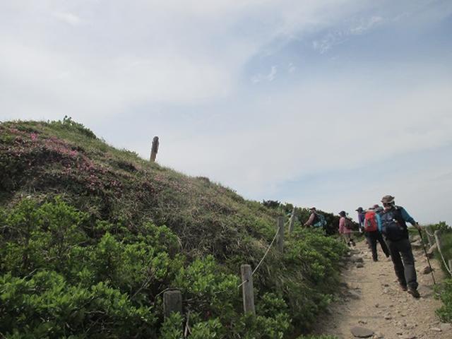 画像5: 【山旅会】伯耆大山に登りませんか