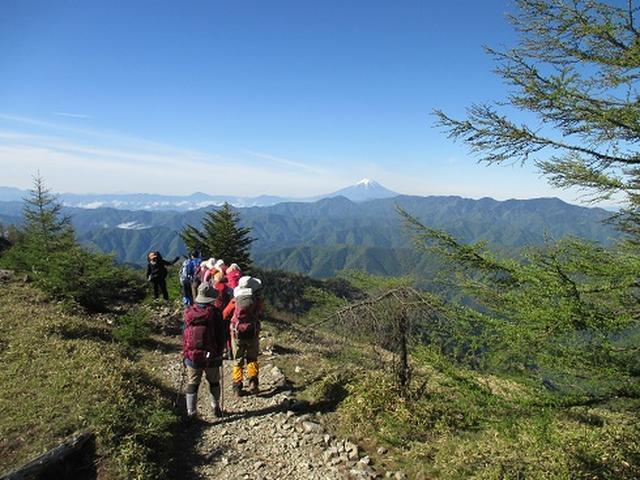 画像7: 【山旅会】雲取山のご案内