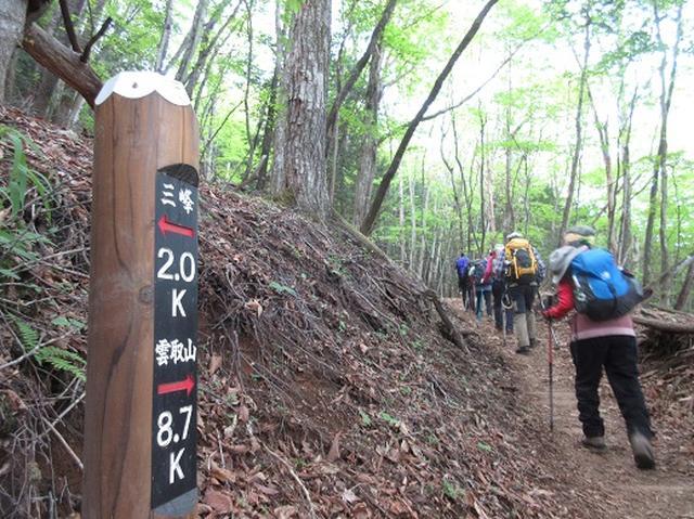 画像2: 【山旅会】雲取山のご案内