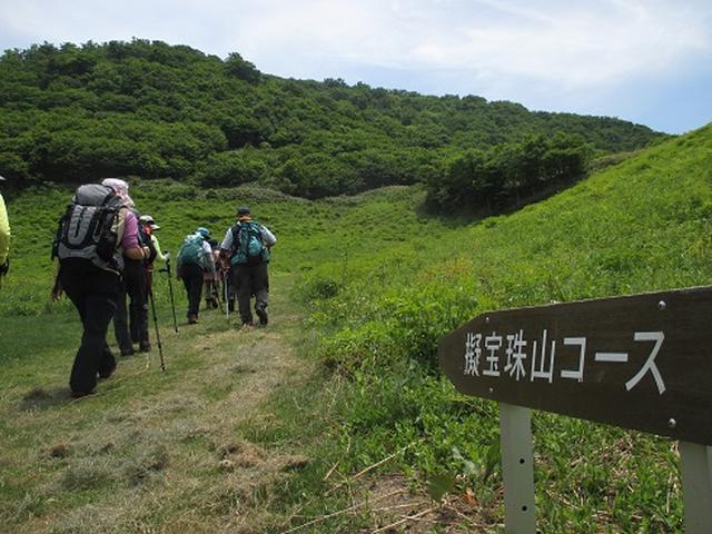画像1: 【山旅会】伯耆大山に登りませんか
