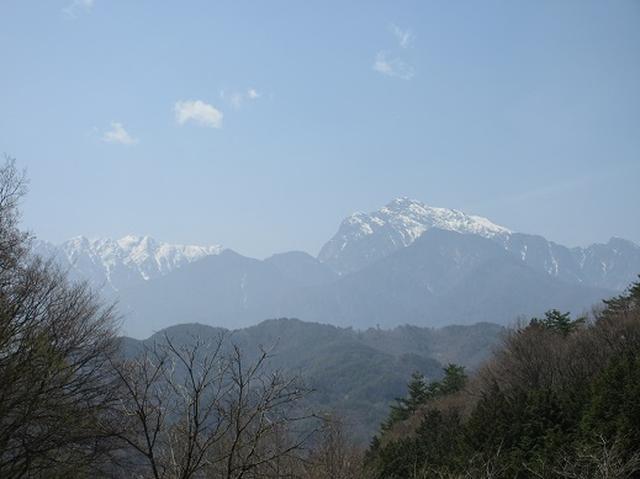画像5: 【山旅会】オオムラサキ自然歩道と新府桃源郷