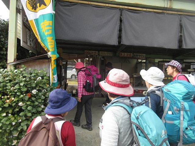画像12: 【山旅会】談山神社から飛鳥・一目千本の吉野山へ