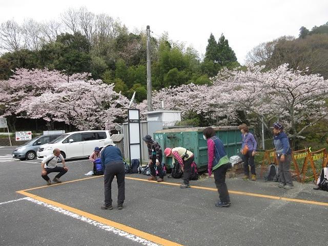 画像1: 【山旅会】談山神社から飛鳥・一目千本の吉野山へ