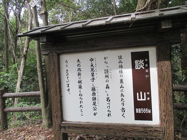画像5: 【山旅会】談山神社から飛鳥・一目千本の吉野山へ