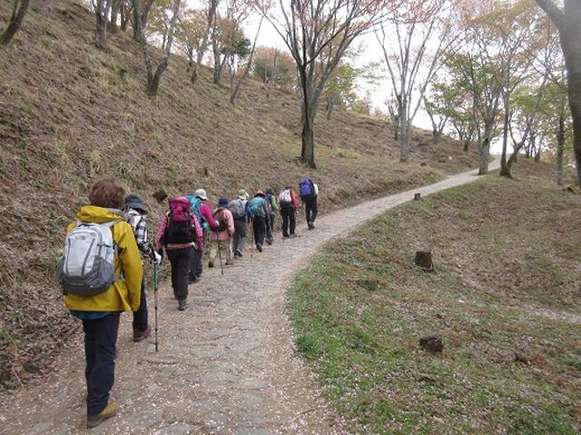 画像1: 【山旅会】吉野山・青根ヶ峰に登ってきました!