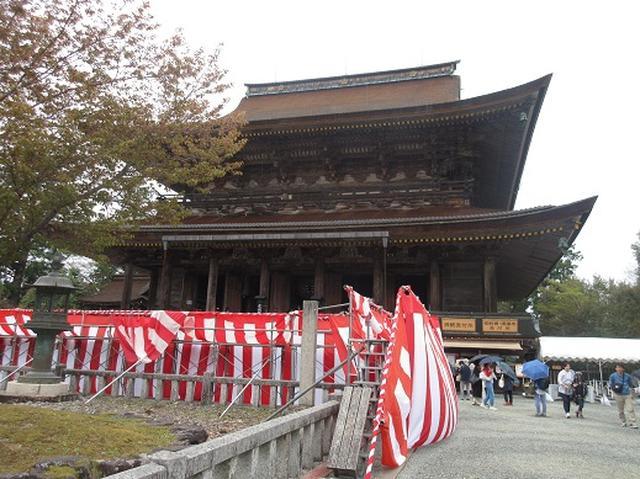 画像10: 【山旅会】吉野山・青根ヶ峰に登ってきました!