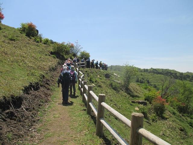 画像1: 【山旅会】井戸湿原ハイキングのご案内