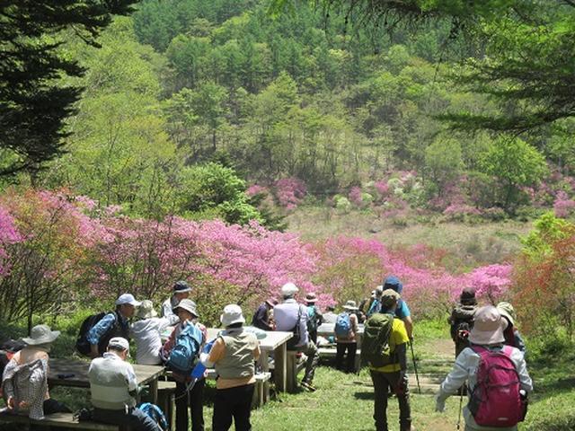 画像6: 【山旅会】井戸湿原ハイキングのご案内