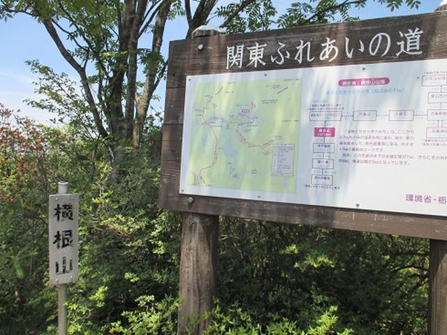 画像3: 【山旅会】井戸湿原ハイキングのご案内