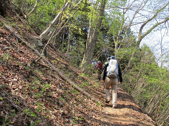 画像1: 【山旅会】浅間嶺