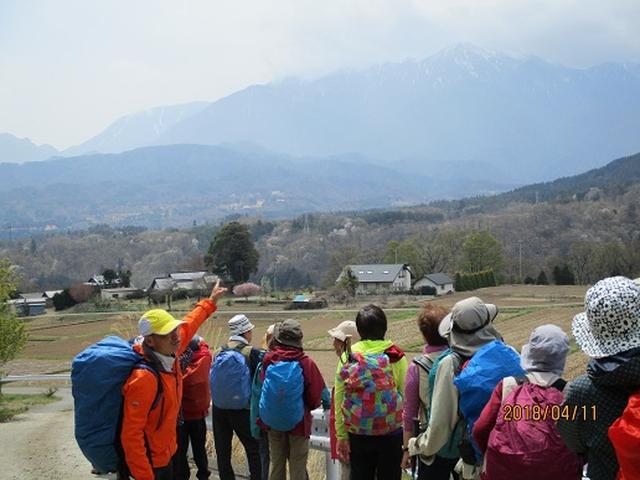 画像10: 【山旅会】オオムラサキ自然歩道