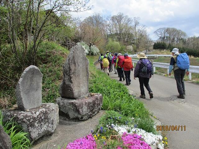 画像11: 【山旅会】オオムラサキ自然歩道