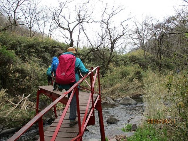 画像6: 【山旅会】オオムラサキ自然歩道