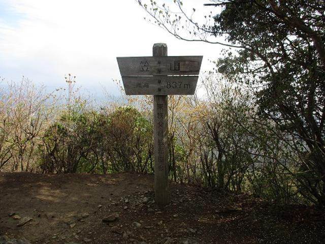 画像3: 【山旅会】笠山から堂平山
