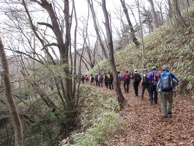 画像10: 【山旅会】八溝山に行ってきました!