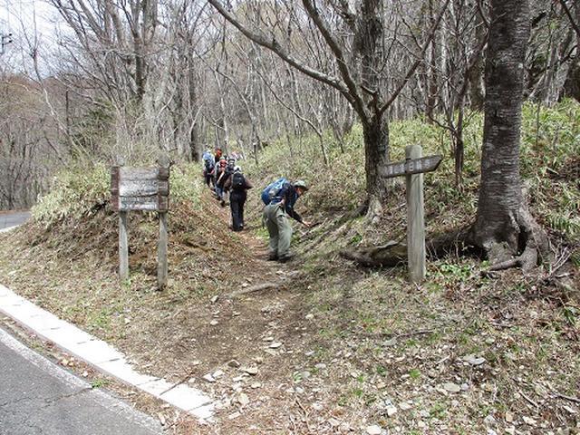 画像7: 【山旅会】八溝山に行ってきました!