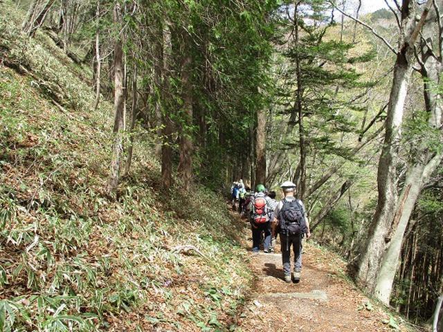 画像2: 【山旅会】八溝山に行ってきました!