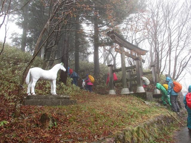 画像6: 【山旅会】2回目の八溝山は雨でした。。。