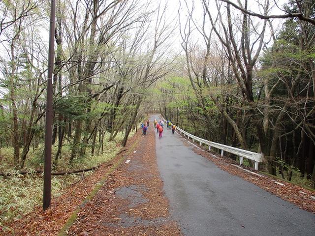 画像11: 【山旅会】2回目の八溝山は雨でした。。。