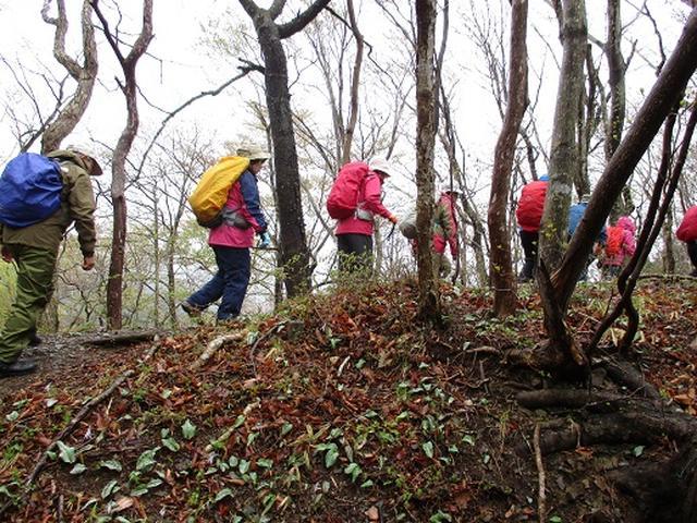 画像1: 【山旅会】2回目の八溝山は雨でした。。。
