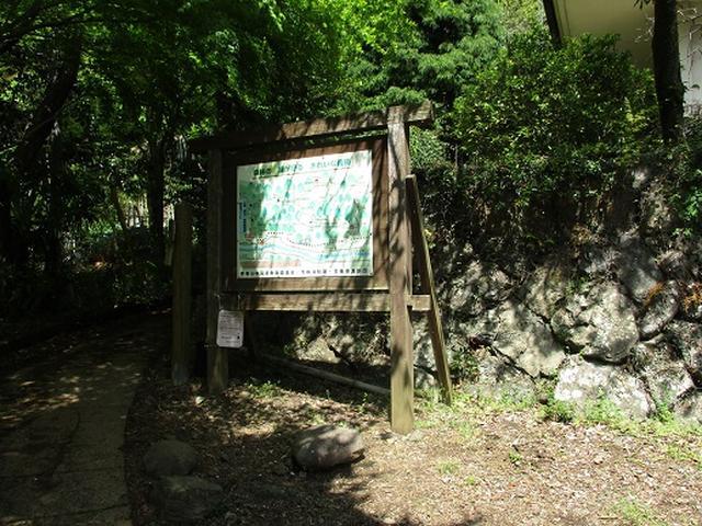画像10: 【山旅会】高水三山下見報告です!