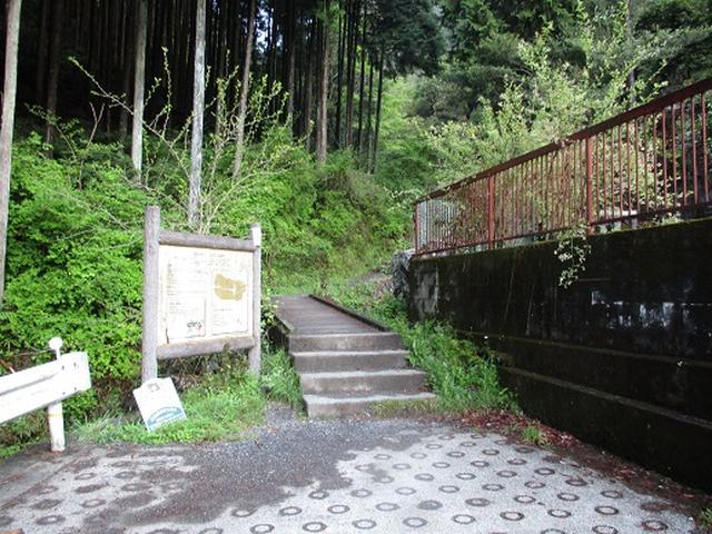 画像3: 【山旅会】高水三山下見報告です!