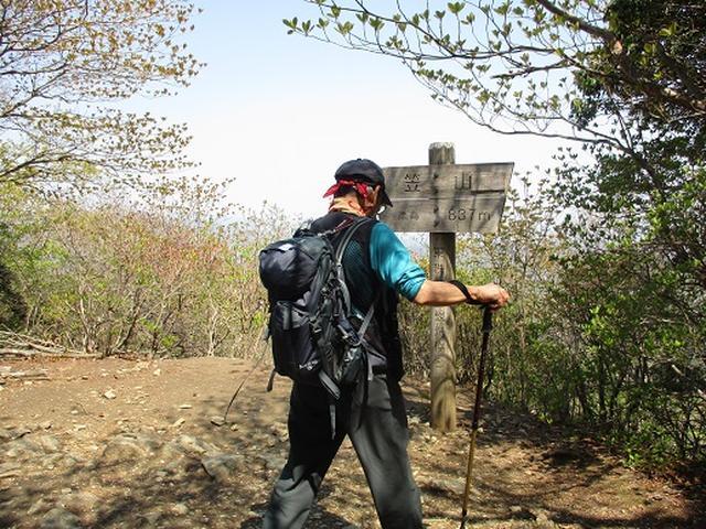 画像4: 【山旅会】笠山から堂平山