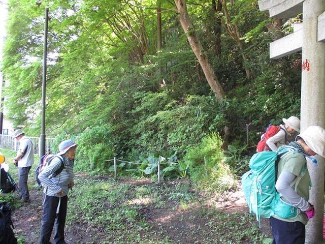 画像1: 【山旅会】西山峠から草戸山