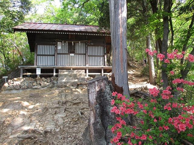 画像4: 【山旅会】日和田山から物見山