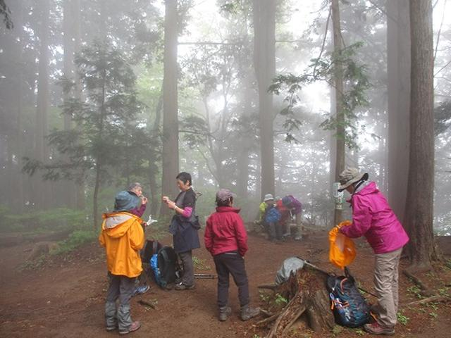 画像7: 【山旅会】高水三山