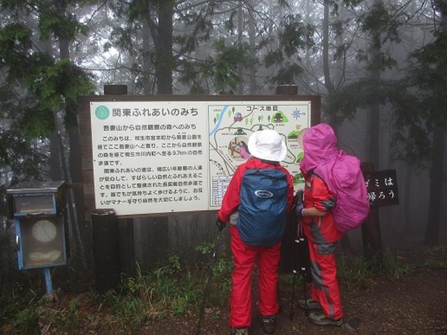 画像5: 【山旅会】桐生吾妻山