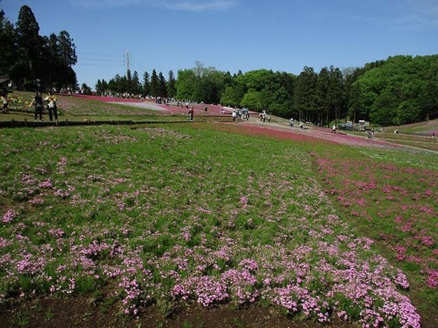 画像5: 【山旅会】琴平丘陵