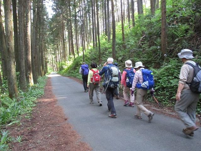画像8: 【山旅会】日和田山から物見山