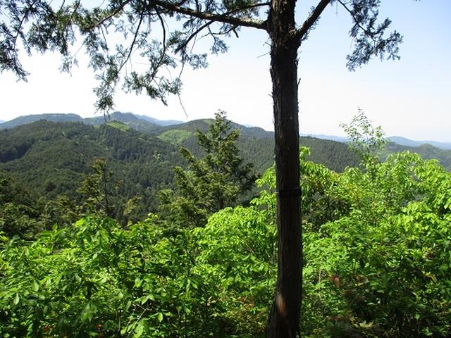 画像6: 【山旅会】日和田山から物見山