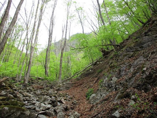 画像3: 【山旅会】両神山