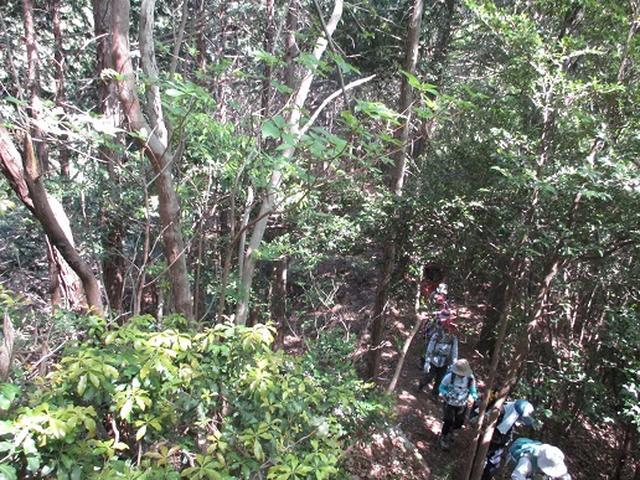画像5: 【山旅会】日和田山から物見山