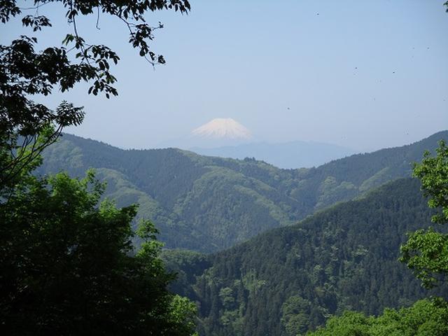 画像6: 【山旅会】狐塚峠から八王子城跡