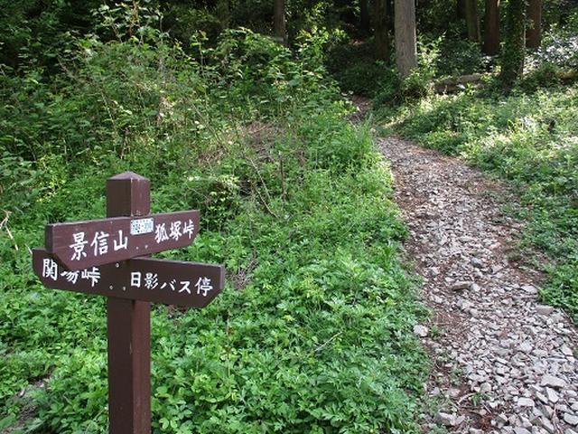 画像3: 【山旅会】狐塚峠から八王子城跡