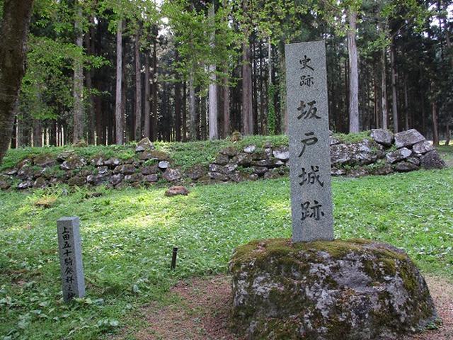 画像1: 【山旅会】坂戸山